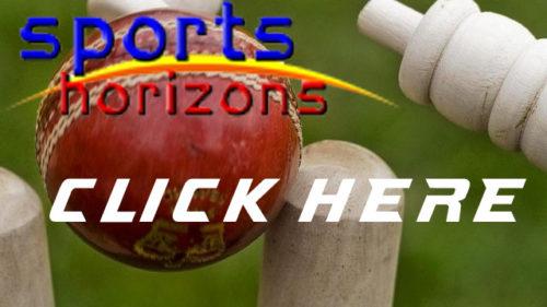 Sports Horizons Button