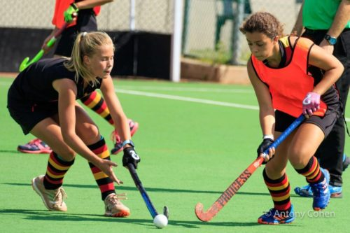 wanderers club Hockey News - March Update 6