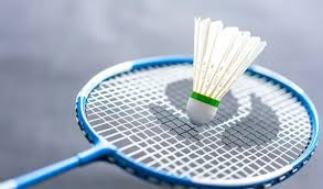 Badminton johannesburg