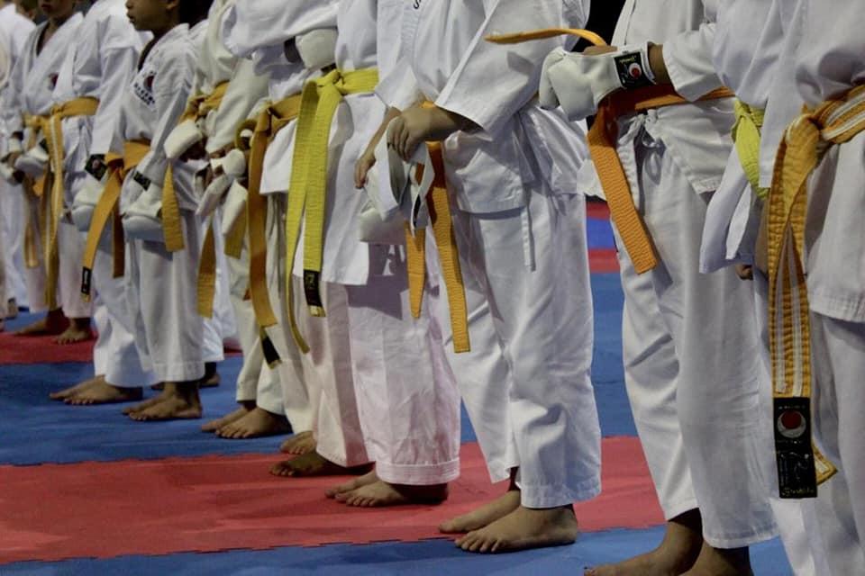 wanderers club Karate 1